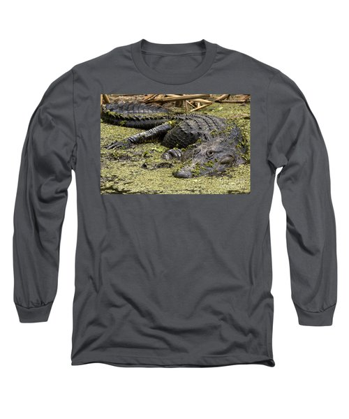 American Alligator Smile Long Sleeve T-Shirt