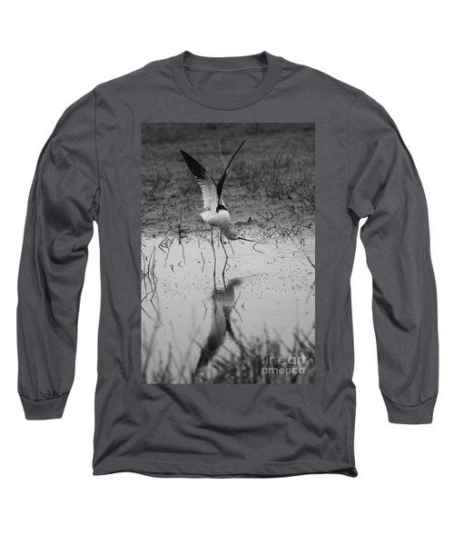 American Avocet Reflection Long Sleeve T-Shirt