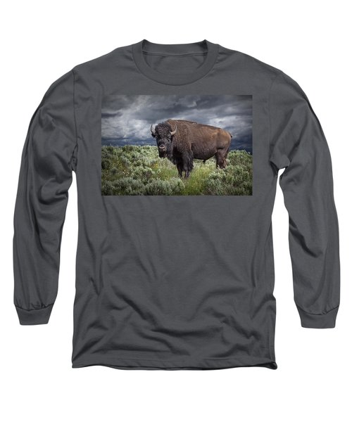 American Buffalo Or Bison In Yellowstone Long Sleeve T-Shirt