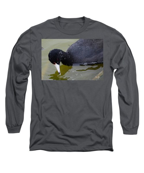 Long Sleeve T-Shirt featuring the photograph American Coot by Debra Martz
