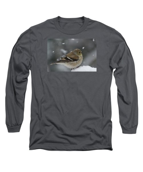 American Goldfinch In Winter Long Sleeve T-Shirt
