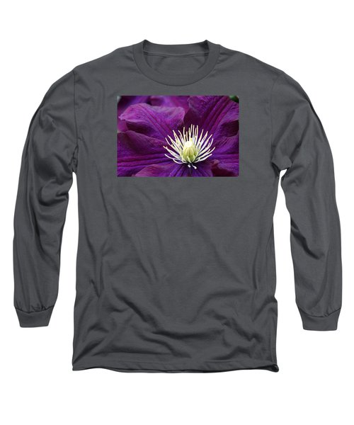 Amethyst Colored Clematis Long Sleeve T-Shirt