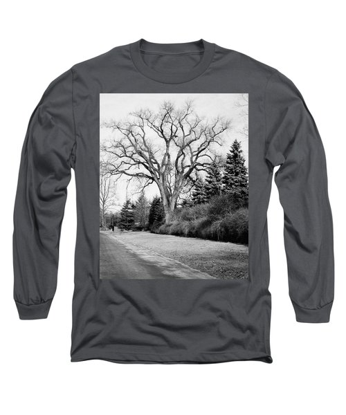 An Elm Tree At The Side Of A Road Long Sleeve T-Shirt