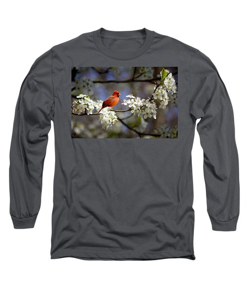 And A Carninal In A Pear Tree Long Sleeve T-Shirt by Bonnie Willis