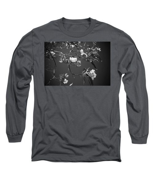 And Spring Became The Summer Long Sleeve T-Shirt