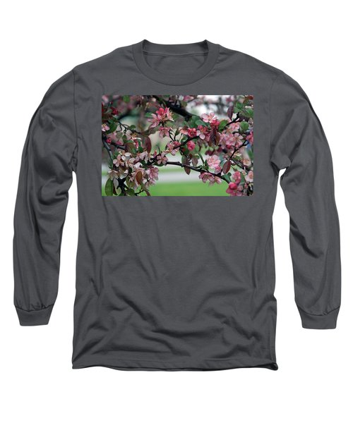 Long Sleeve T-Shirt featuring the photograph Apple Blossom Time by Kay Novy