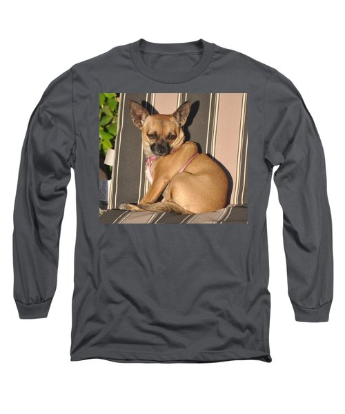 Are  You Talking To Me Long Sleeve T-Shirt by Jay Milo