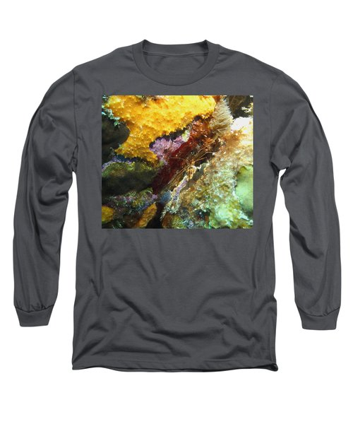 Arrow Crab In A Rainbow Of Coral Long Sleeve T-Shirt by Amy McDaniel