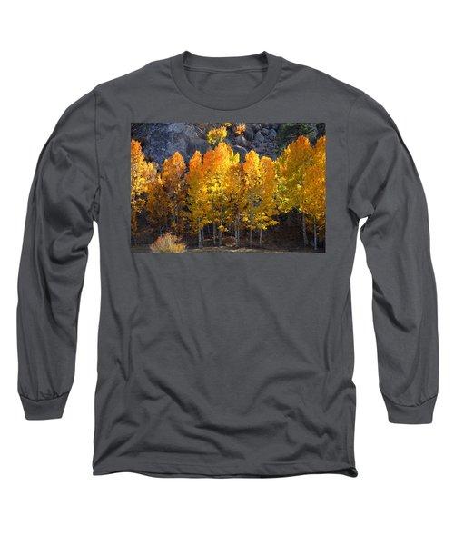Aspen Gold Long Sleeve T-Shirt by Lynn Bauer