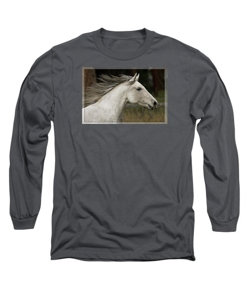At A Full Gallop Long Sleeve T-Shirt by Wes and Dotty Weber