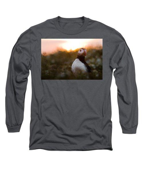 Atlantic Puffin At Sunrise Skomer Long Sleeve T-Shirt by Sebastian Kennerknecht