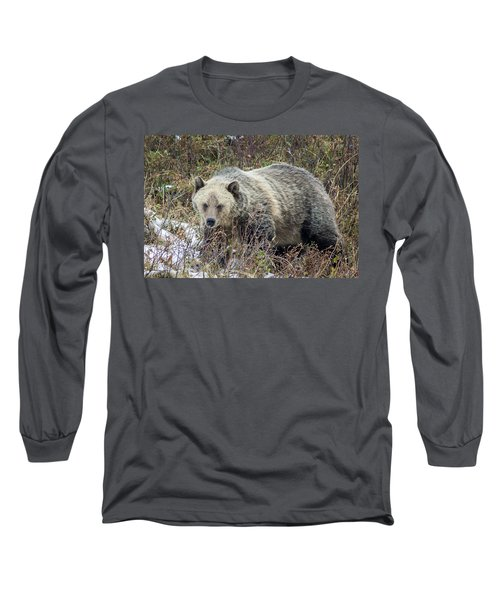 Long Sleeve T-Shirt featuring the photograph Autumn Grizzly by Jack Bell