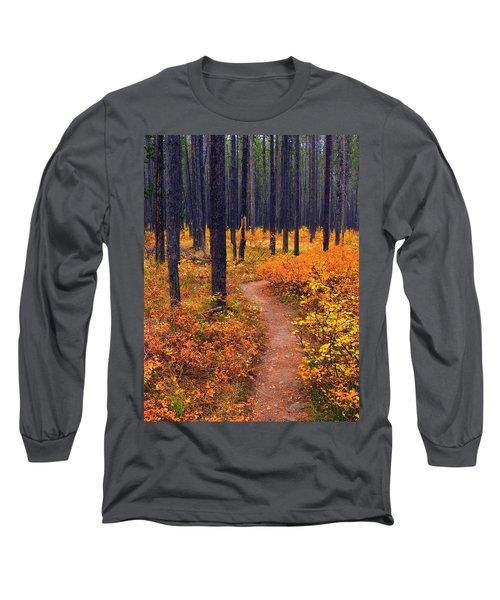 Long Sleeve T-Shirt featuring the photograph Autumn In Yellowstone by Raymond Salani III