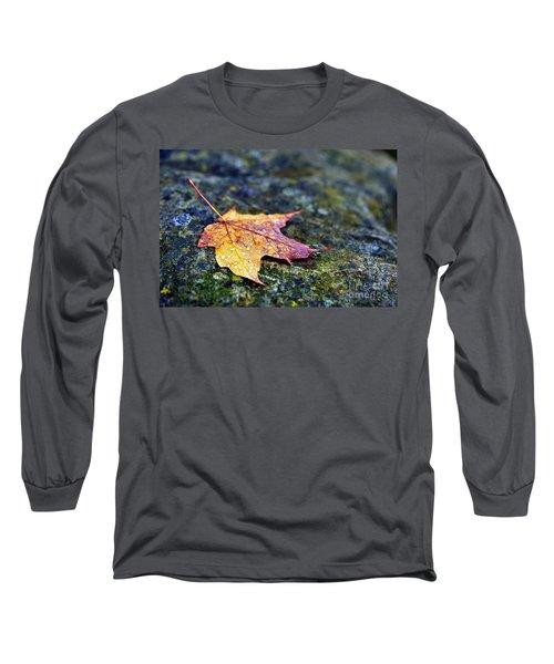 Autumn Leaf On Rocky Ledge Long Sleeve T-Shirt by Terri Gostola