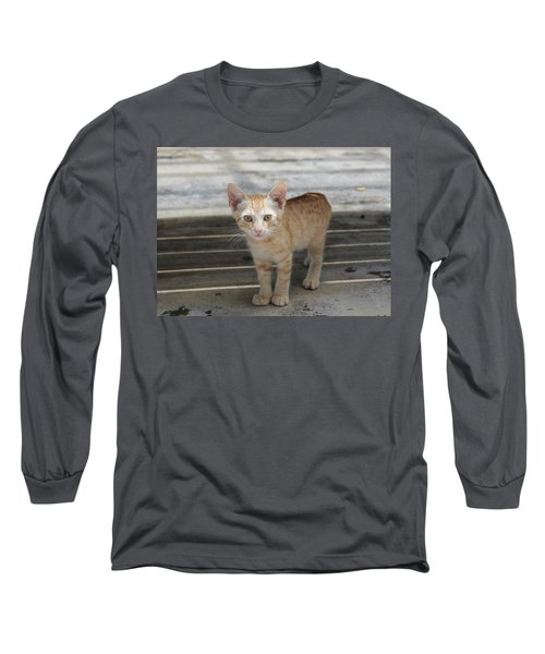 Baby Kitty Long Sleeve T-Shirt by Catie Canetti