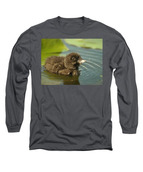 Long Sleeve T-Shirt featuring the photograph Baby Loon by James Peterson