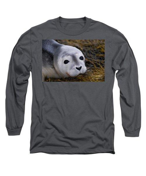Baby Seal Long Sleeve T-Shirt by DejaVu Designs