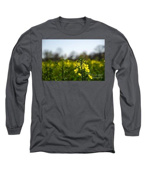Backlit Canola Flower Long Sleeve T-Shirt by Kennerth and Birgitta Kullman