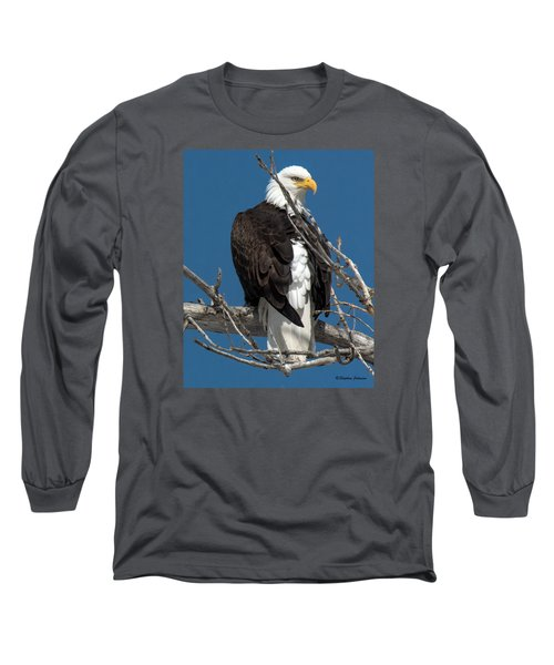 Bald Eagle Putting On The Ritz Long Sleeve T-Shirt by Stephen  Johnson