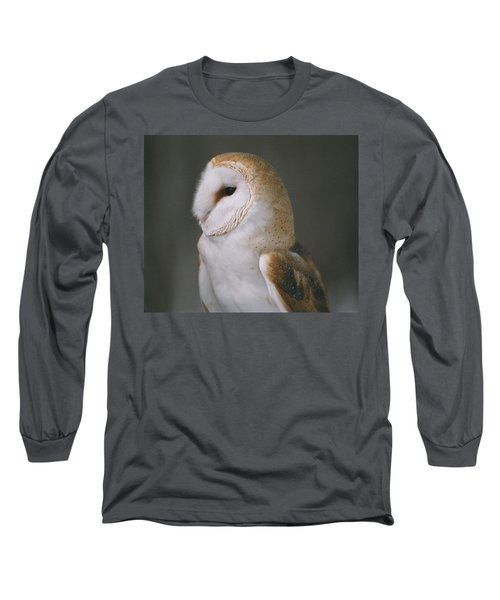 Barn Owl Long Sleeve T-Shirt by David Porteus