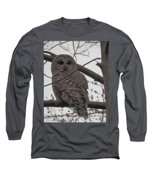 Long Sleeve T-Shirt featuring the photograph Barred Owl Perched by Emmy Marie Vickers