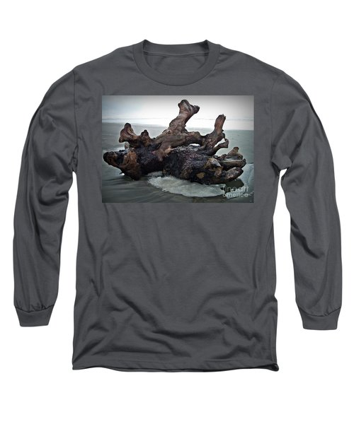 Beach Driftwood In Color Long Sleeve T-Shirt by Chalet Roome-Rigdon