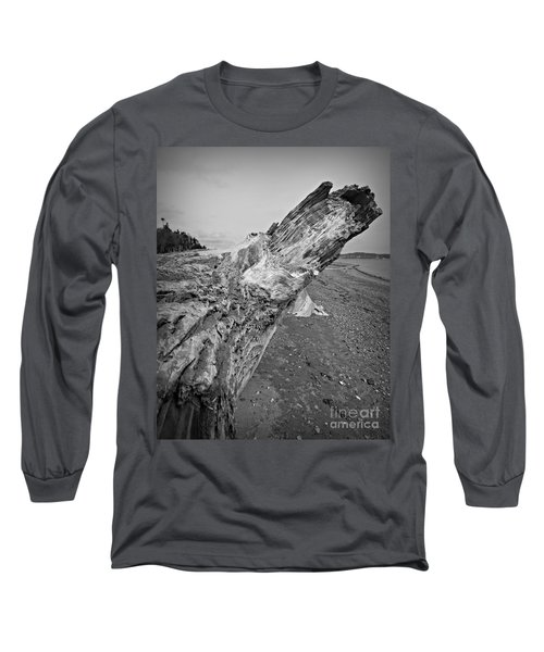Beach Driftwood View Long Sleeve T-Shirt by Chalet Roome-Rigdon