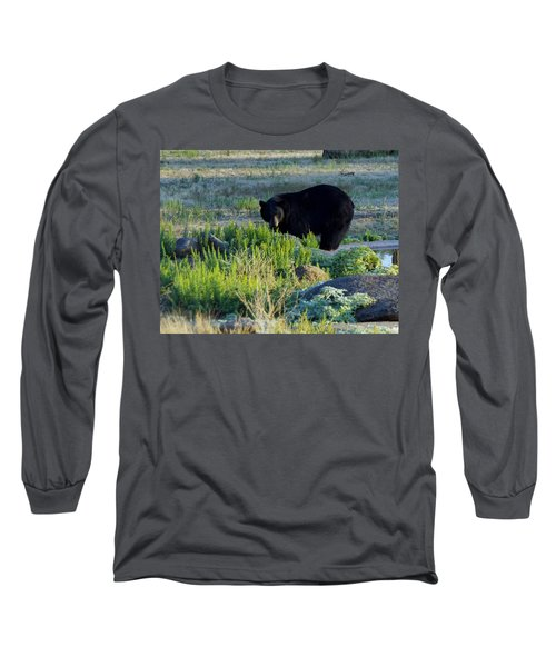 Bear 3 Long Sleeve T-Shirt