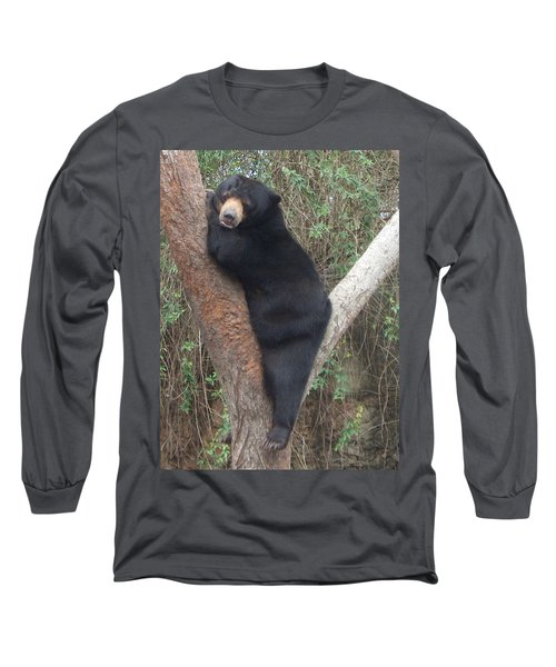 Bear In Tree   Long Sleeve T-Shirt