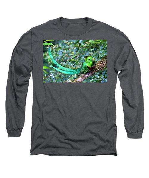 Beautiful Quetzal 3 Long Sleeve T-Shirt by Heiko Koehrer-Wagner