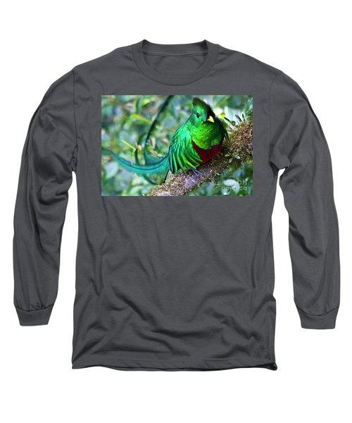 Beautiful Quetzal 4 Long Sleeve T-Shirt by Heiko Koehrer-Wagner