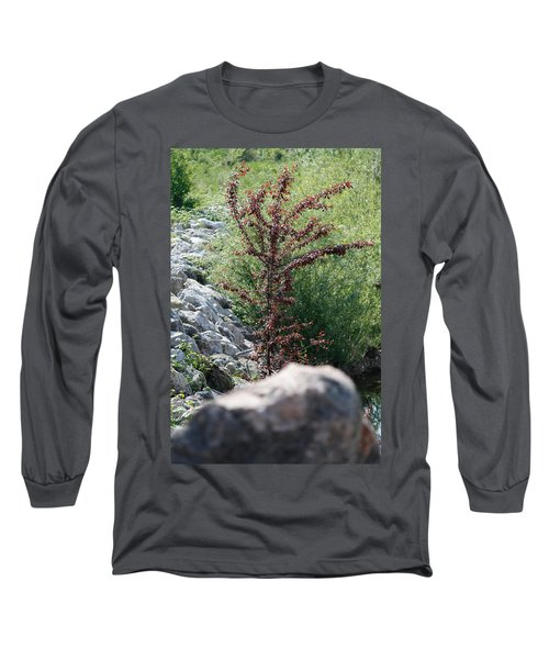 Beauty Is Everywhere Long Sleeve T-Shirt