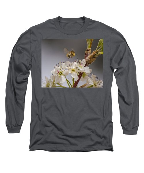 Bee Working The Bradford Pear 2 Long Sleeve T-Shirt