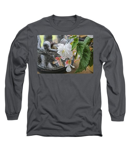 Long Sleeve T-Shirt featuring the photograph Begonia by Denise Romano