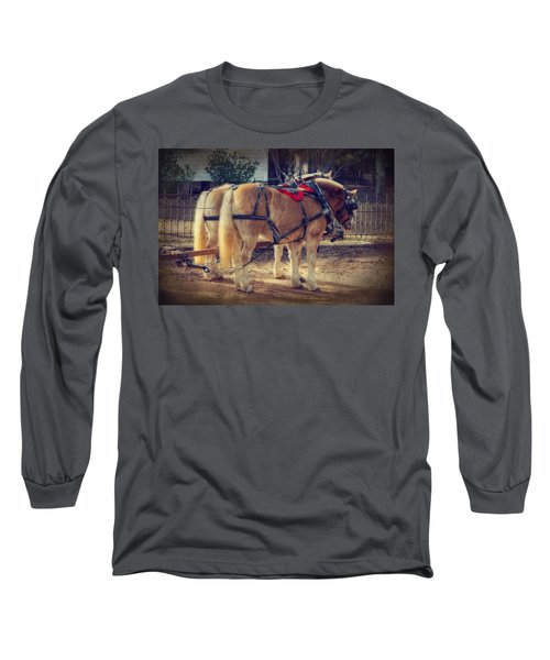 Belgium Draft Horses Long Sleeve T-Shirt