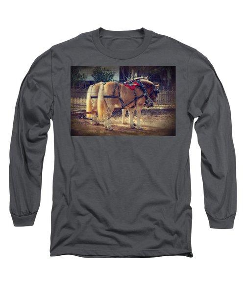 Belgium Draft Horses Long Sleeve T-Shirt