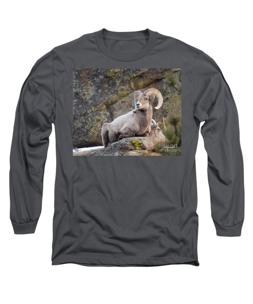 Big Horn Long Sleeve T-Shirt