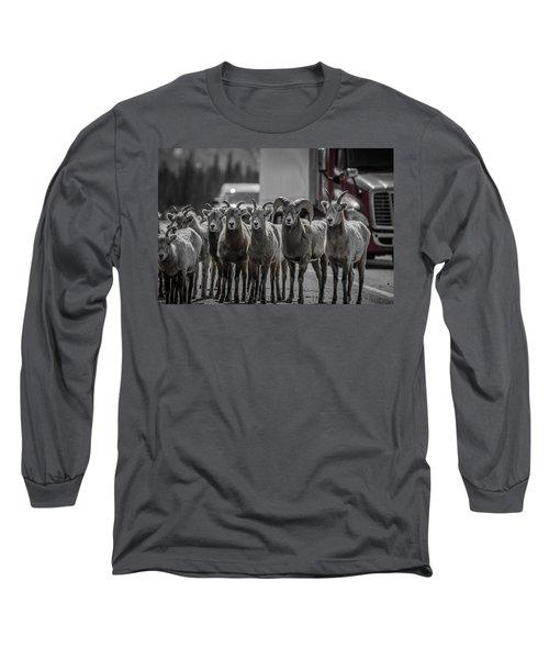 Big Horn Sheep Road Block Long Sleeve T-Shirt