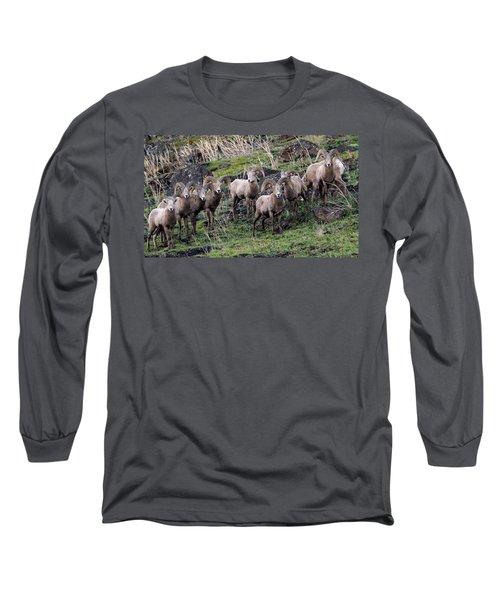 Bighorn Reunion Long Sleeve T-Shirt by Steve McKinzie