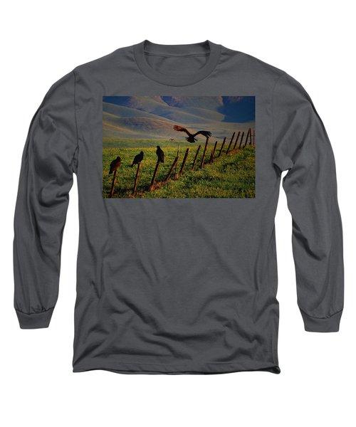 Birds On A Fence Long Sleeve T-Shirt by Matt Harang