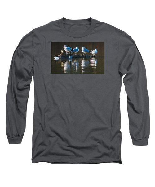 Birds On A Log Long Sleeve T-Shirt