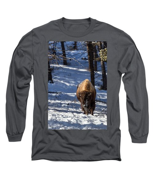 Bison In Winter Long Sleeve T-Shirt