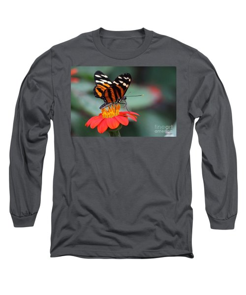 Black And Brown Butterfly On A Red Flower Long Sleeve T-Shirt