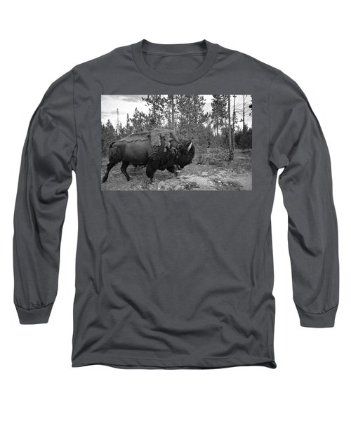 Black And White Bison In Yellowstone Long Sleeve T-Shirt