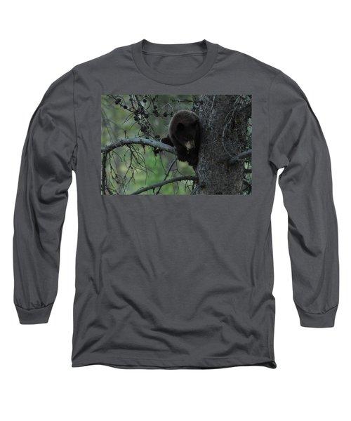 Black Bear Cub In Tree Long Sleeve T-Shirt