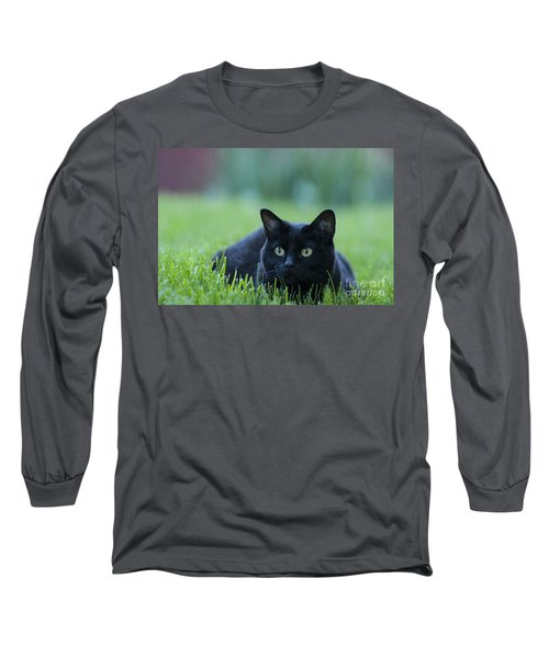 Black Cat Long Sleeve T-Shirt by Juli Scalzi