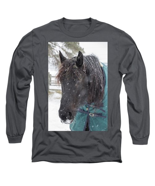 Black Horse In Snow Long Sleeve T-Shirt