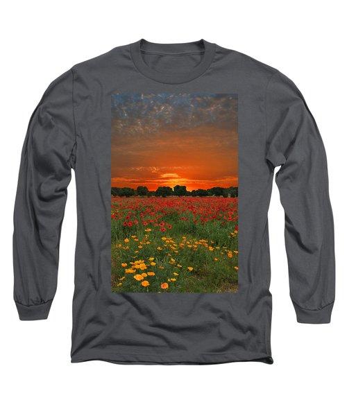 Blaze Of Glory Long Sleeve T-Shirt by Lynn Bauer