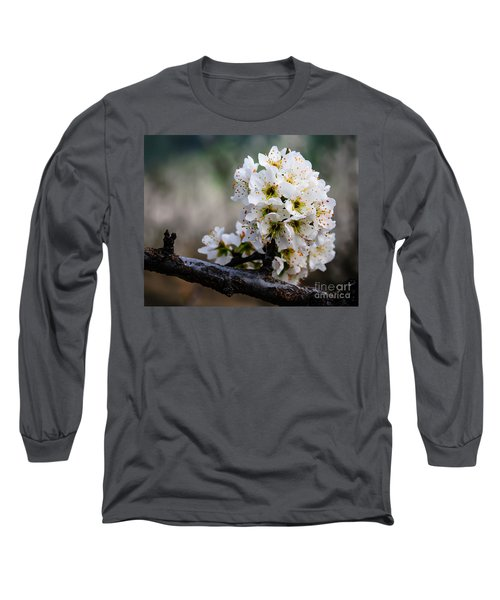 Blossom Gathering Long Sleeve T-Shirt