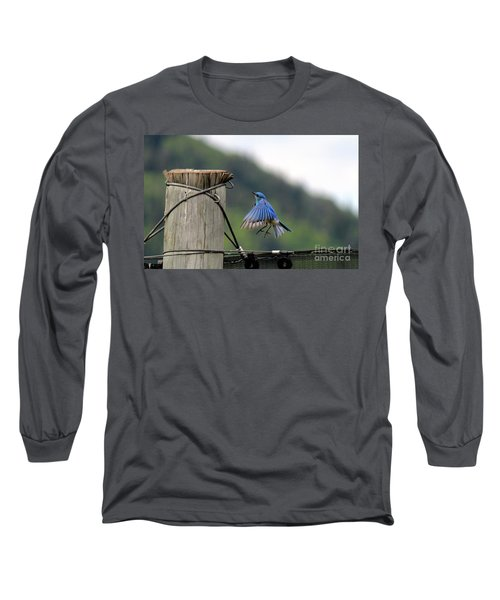 Long Sleeve T-Shirt featuring the photograph Blue Bird by Ann E Robson